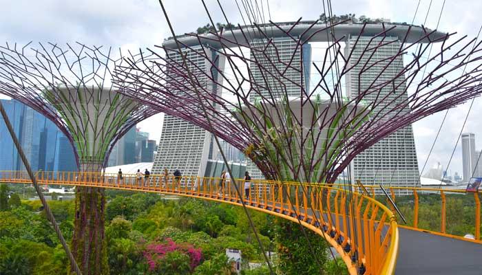 Cruise Through History Gardens Of Singapore